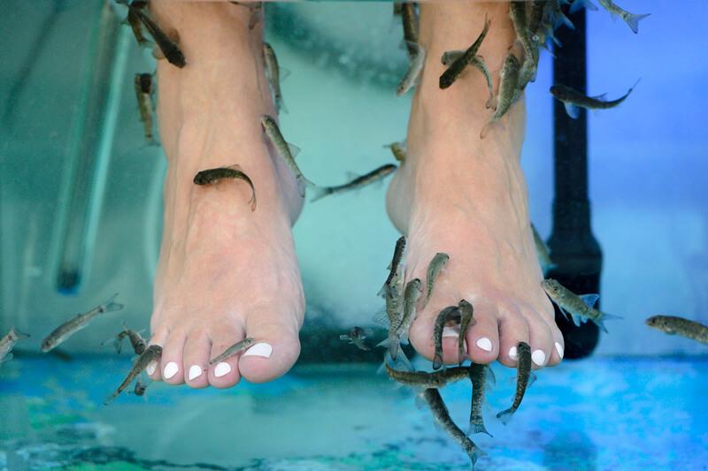 gezondheidsrisicos-van-een-voetbad-met-visjes